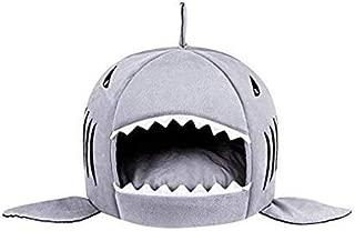 Best shark bed cats Reviews