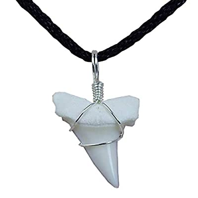 GemShark Real Shark Tooth Necklace for Boys Girls Unisex Mako Sterling Silver Charm Pendant