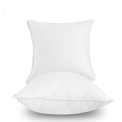 Dream High Premium Goose Down Feather Throw Pillow Inserts(Set of 2)-100% Cotton Cover, Square,Luxury Soft Plush,Premium Stuffer Down,Machine Wash,Cushion Insert (28x28)
