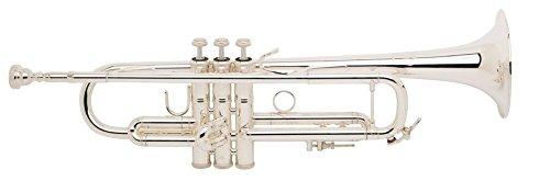 Bachmann lr180s de 43 g Stratocaster Stradivarius en B: Amazon.es: Instrumentos musicales