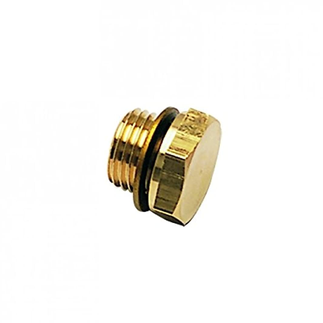 Parker 0220 21 00-pk10 Hex Head Plug with Captive Sealing Washer Male, BSPP, Brass, G1/2 (Pack of 10)