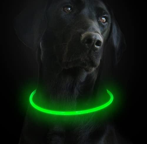 Toozey LED Collier Lumineux pour Chiens dans la Nuit, USB Rechargeable/Découpable Collier Clignotant pour Chiens - Visibilité et Sécurité Accrues pour Vos Animaux de Compagnie - 3 Modes (Vert)