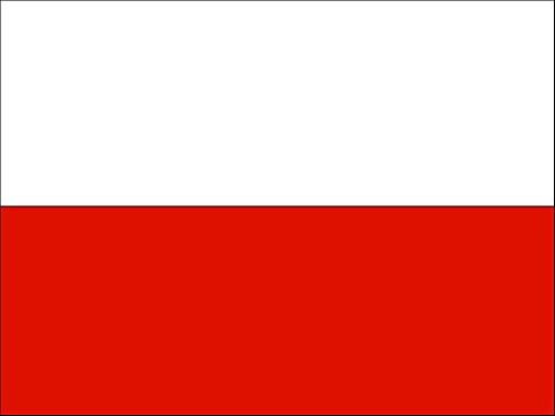 Eco POLNISCHE Fahne mit 2 Ösen 90x150cm Flagge Polen Hissflagge Hissfahne Fahnen