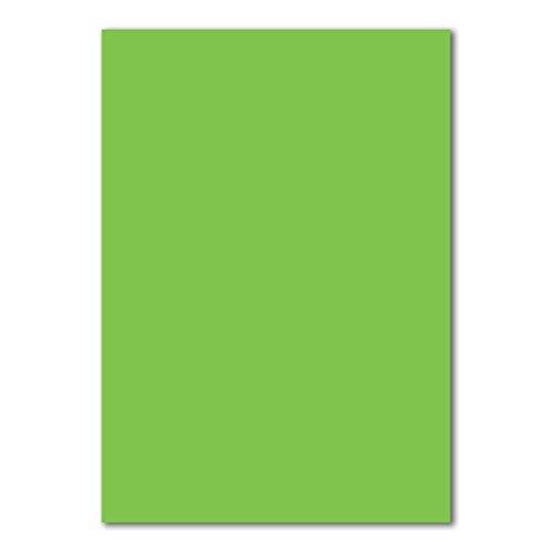 50 DIN A4 Papierbogen Planobogen - Hellgrün (Grün) - 160 g/m² - 21 x 29,7 cm - Bastelbogen Ton-Papier Fotokarton Bastel-Papier Ton-Karton - FarbenFroh