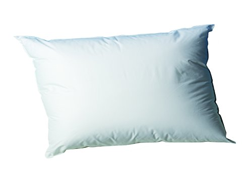 Blanc rêve Oreillers antiacariens 45 x 70 cm PHYTOPURE Confort Ferme