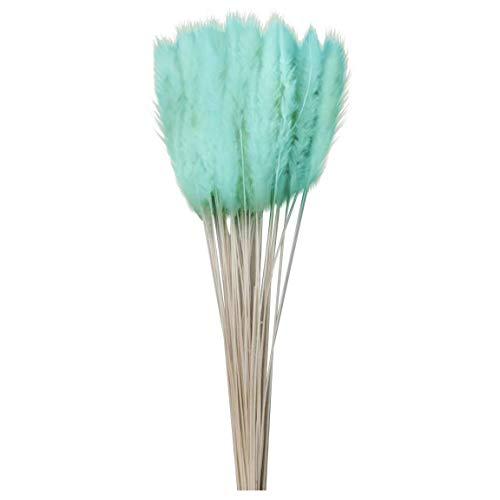 15 Stück Pampasgras Getrocknet Deko 60cm Lang Fluffig Natürlich Besonders Phragmites Blumenstrauß Trockenblumen Dekoration Für Home Hotel Hochzeit (G)