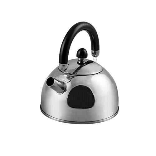 LUISONG FANMENGY - Tetera de acero inoxidable con filtro esférico de 0,8 L, hervidor de agua, gas, cocina de inducción, modelos modernos