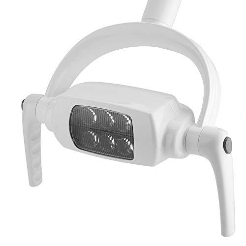 Weikeya - Lámpara oral dental, lámpara bucal dental, 6000 K, 29 x 30 cm, ayuda a la dentista AC 12 V ± 20 %,...