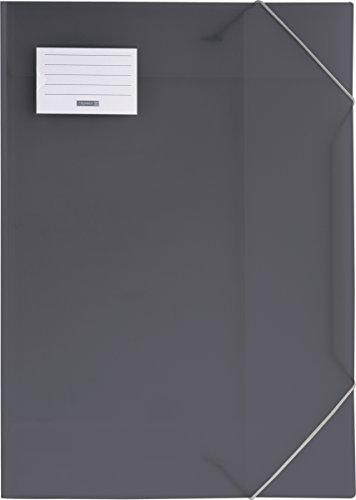 Brunnen 104705380 Sammelmappe FACT!pp (A3, transluzente PP-Folie, mit Gummizug, mit Namensschild) grau