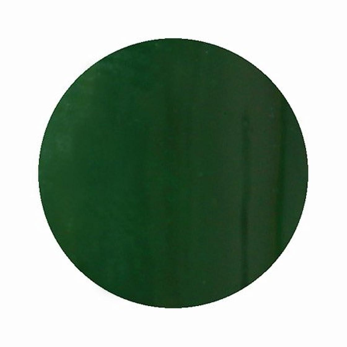 ホイスト道を作るささやきパラポリッシュ ハイブリッドカラージェル V9 モスグリーン 7g