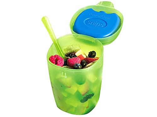 Snips Fruit Ice-Contenitore per Frutta con Ghiaccio, Verde Trasparente, 0,50 lt