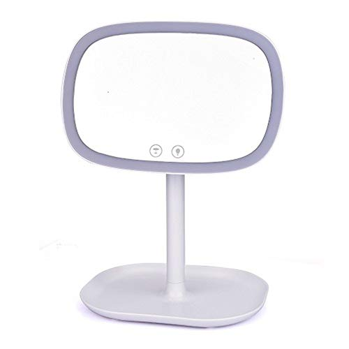 Miroir De Courtoisie LED Multifonctionnel, Miroir Portable Vanité Écran Tactile Lampe De Table Compacte 10X Zoom Avec Éclairage,Blanc