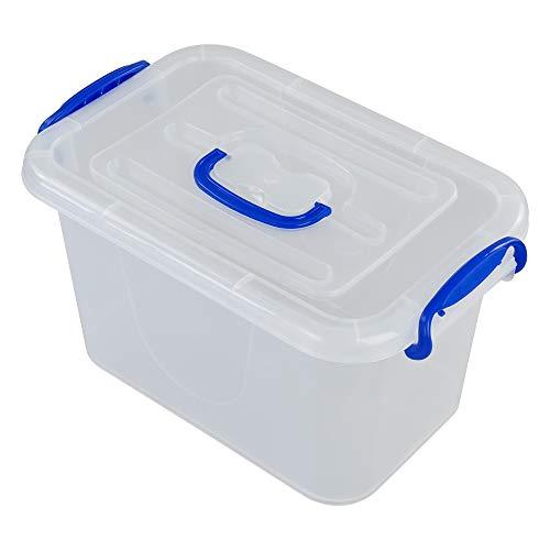 Fosly Cajas Transparente de Plástico, Caja de Almacenaje con Tapas, Paquete de 2
