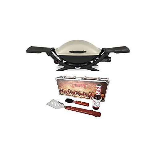 Weber Q 2000 Portable Liquid Propane Gas Grill (Titanium) BBQ Bundle (2 Items) Grills Propane
