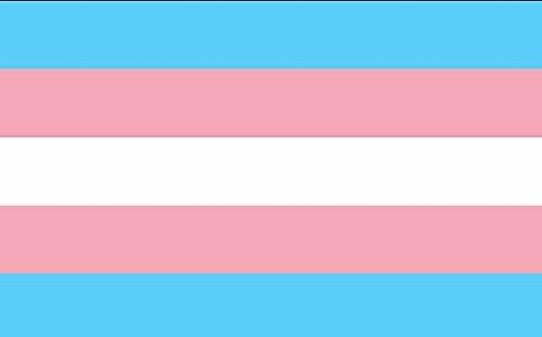Drapeau pour droits LGBT et trans, idéal pour un club, une école, un festival, une décoration de fête, 100 % polyester, 45 x 30 cm