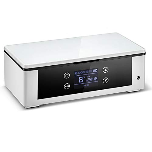 TWW Réfrigérateur Mini Voiture Froide Réfrigérateur Boîte De Rangement Portable Ménage Petit Réfrigérateur Voiture Réfrigérateur Produits Ménagers