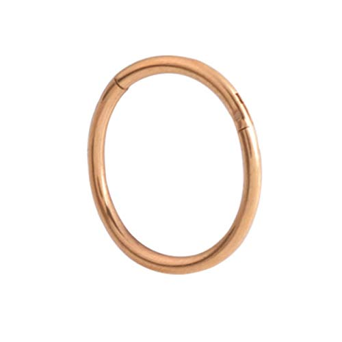 LEXING Hinged Septa Nose Ring Lip Ear Cartilage Ear Spiral Body Piercing Jewelry Steel Ring Hoop (Color : 1.2x8mm, Size : Rose Gold)