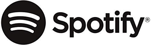 SHARP DR-I470 PRO (BK) Stereo Internetradio/DAB (DAB+ Digitalradio, Spotify, WiFi-Streaming, Bluetooth, DLNA, App-Steuerung, Farbdisplay, FM Radio, Alarm-/Schlaf und Snooze-Funktion, 30 Watt) schwarz