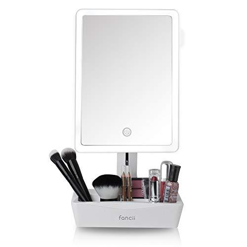 Fancii Schminkspiegel Beleuchteter LED Kosmetikspiegel mit 10-Fach Vergrößerung ausziehbar und Licht dimmbar + 5-Fächer für Make Up I 23x16cm großer Spiegel schwenkbar