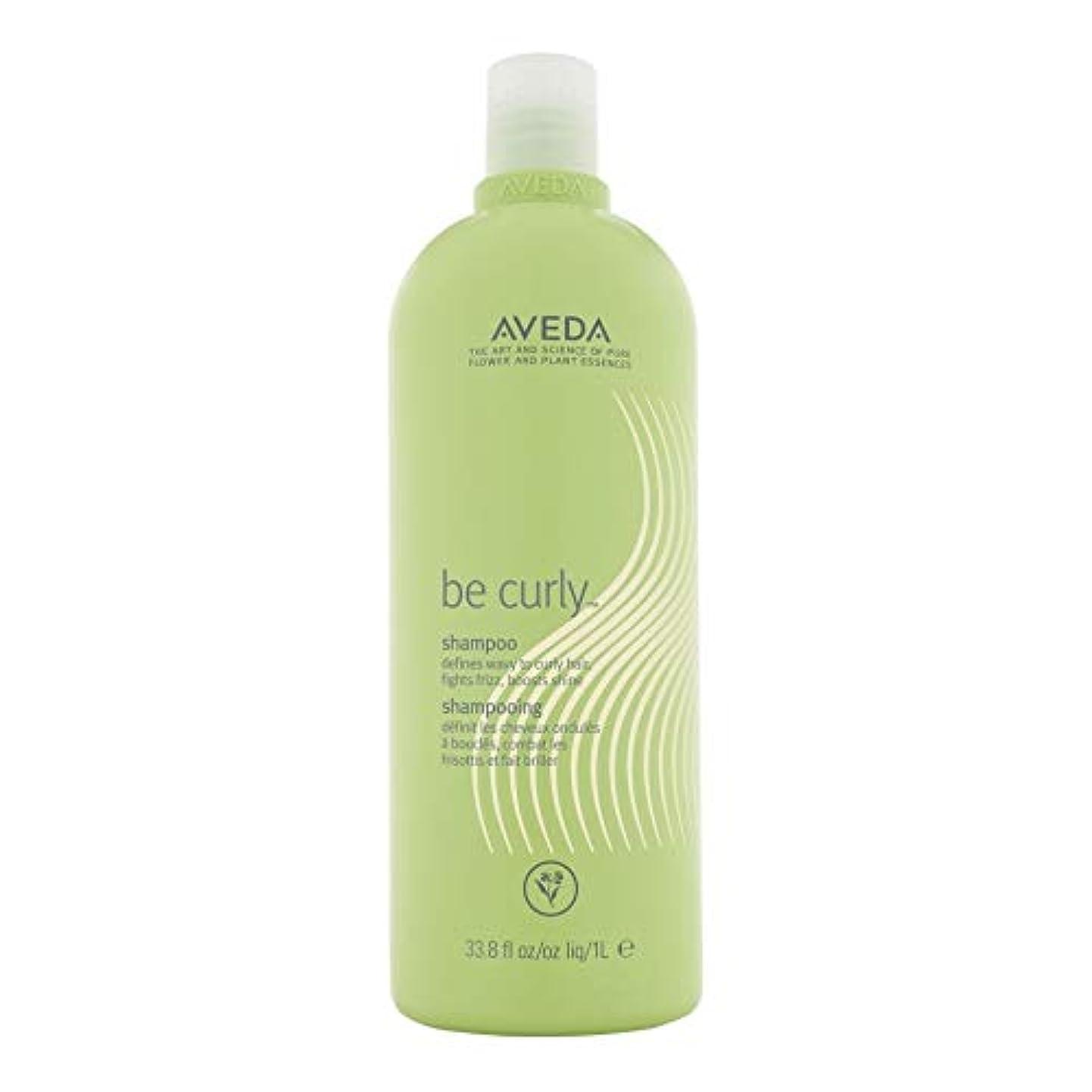 反映する硫黄ふさわしい[AVEDA ] アヴェダカーリーシャンプー1リットルなります - Aveda Be Curly Shampoo 1L [並行輸入品]