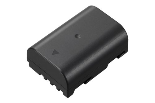 Panasonic LUMIX DMW-BLF19E Li-Ion Akku (geeignet für LUMIX GH4 und LUMIX GH3) schwarz