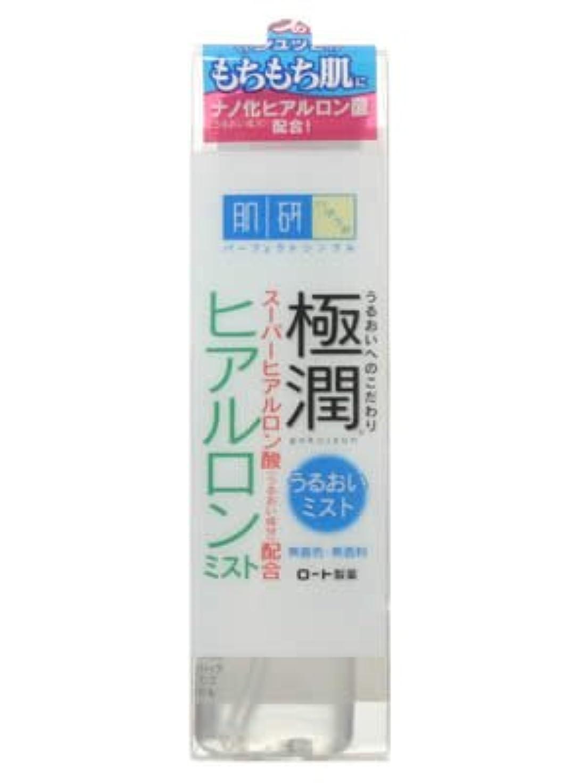 プリーツ麺口実肌研 極潤ヒアルロンミスト 45ml