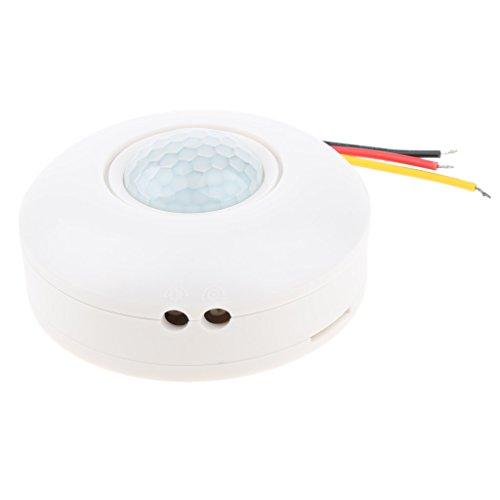 perfk Interruptor de Luz de Detector de Movimiento de Presencia PIR Montado en Superficie de 360 grados