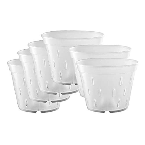 Orchid Pots with Holes, Clear Orchid Pots Plastic Planter Clear Flower Pot Indoor 5.5 inch 10 Pack