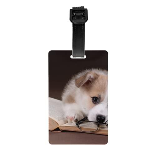 Juego de 2 etiquetas para equipaje, lindo cachorro Welsh Corgi, libro, anteojos, tarjetas de identificación de equipaje, con correa de muñeca desmontable y tarjeta de dirección para bolsa de viaje, m
