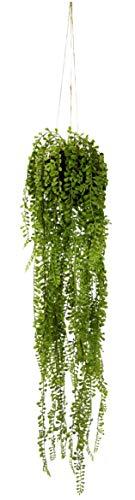Künstlicher Senecio Hänger in Hängeampel auf Erdballen Grünpflanzen Kunstpflanze Pflanze Zimmerpflanze Seidenblumen Dekopflanze Deko Grün Erbse am Band Erbsenpflanze Perlenschnur Busch Sträucher Gras
