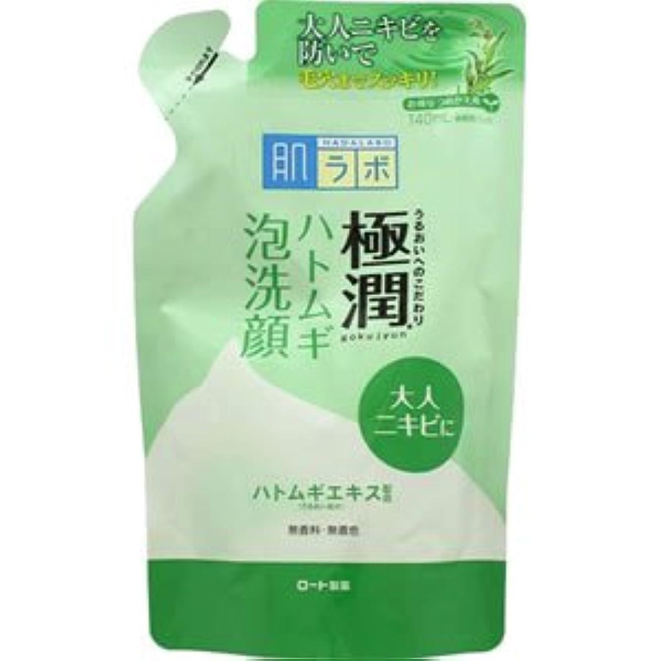 層過去指(ロート製薬)肌研 極潤ハトムギ泡洗顔 140ml(つめかえ用)(お買い得3個セット)