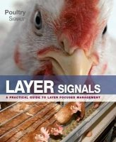 Layer Signals: A Practical Guide for Layer Focused Management
