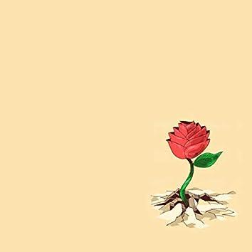 Gravity / Thorns