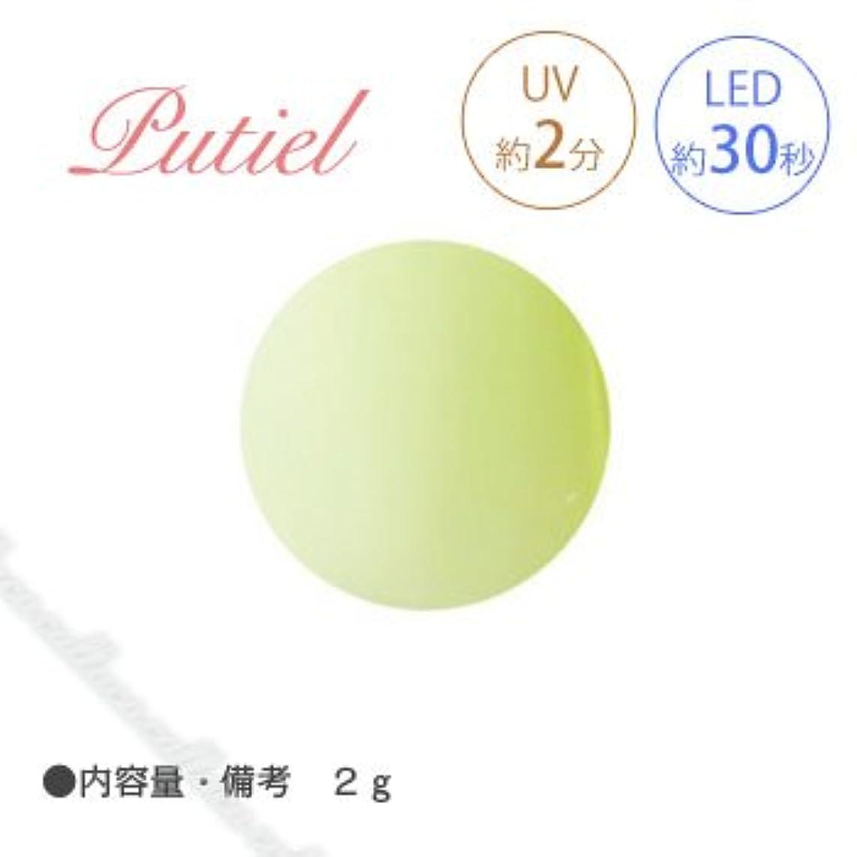 ピラミッド気球ホームレスPutiel プティール カラージェル 225 マスカット 2g