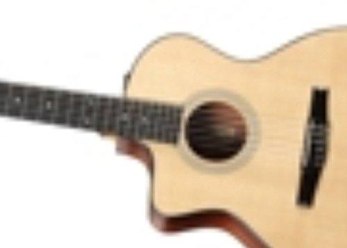 Taylor 214CE-N LH Konzertgitarre