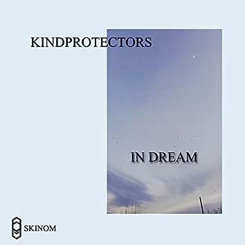 In Dream