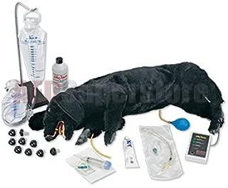 Nasco - Advanced Sanitary CPR Dog
