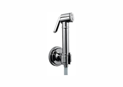 Parryware Cardiff T9941A1 Brass Health Faucet with Hose and Hook