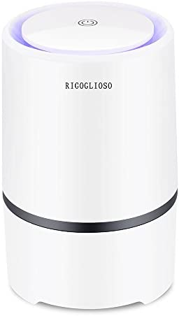 RIGOGLIOSO Air Purifier for Home with True HEPA Filters,Low Noise Portable Air Purifier with Night Light,Desktop USB Air Cleaner,GL2103(No Adapter)