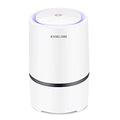 Portable Air Purifier for Home w...