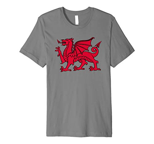 Welsh Red Dragon Flag of Wales T-Shirt
