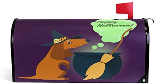 Dachshund en disfraz de bruja Halloween 21 x 18 en tamao estndar de la cubierta del buzn