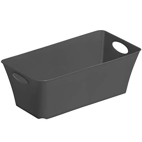 Rotho Living kleine Aufbewahrungsbox 2l, Kunststoff (PP) BPA-frei, anthrazit, 2l (25,2 x 13,4 x 9,0 cm)