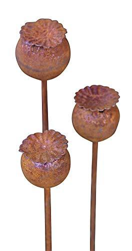 Bornhöft 3er Set Gartenstecker Mohn Mohnkapsel Metall Rost Gartendeko Edelrost Rankstab Beetstecker Topfstecker Naturrost (Braun)