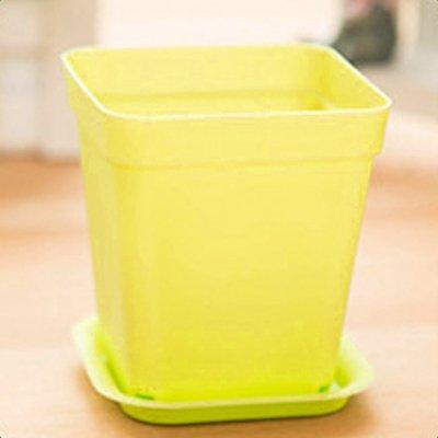 Desktop creativo pianta in vaso piattini adatti per una vasta gamma di impianti di carne la personalità dei vasi da fiori in plastica portante mini vasetti di verdure nel 1853, il piccolo giallo pots