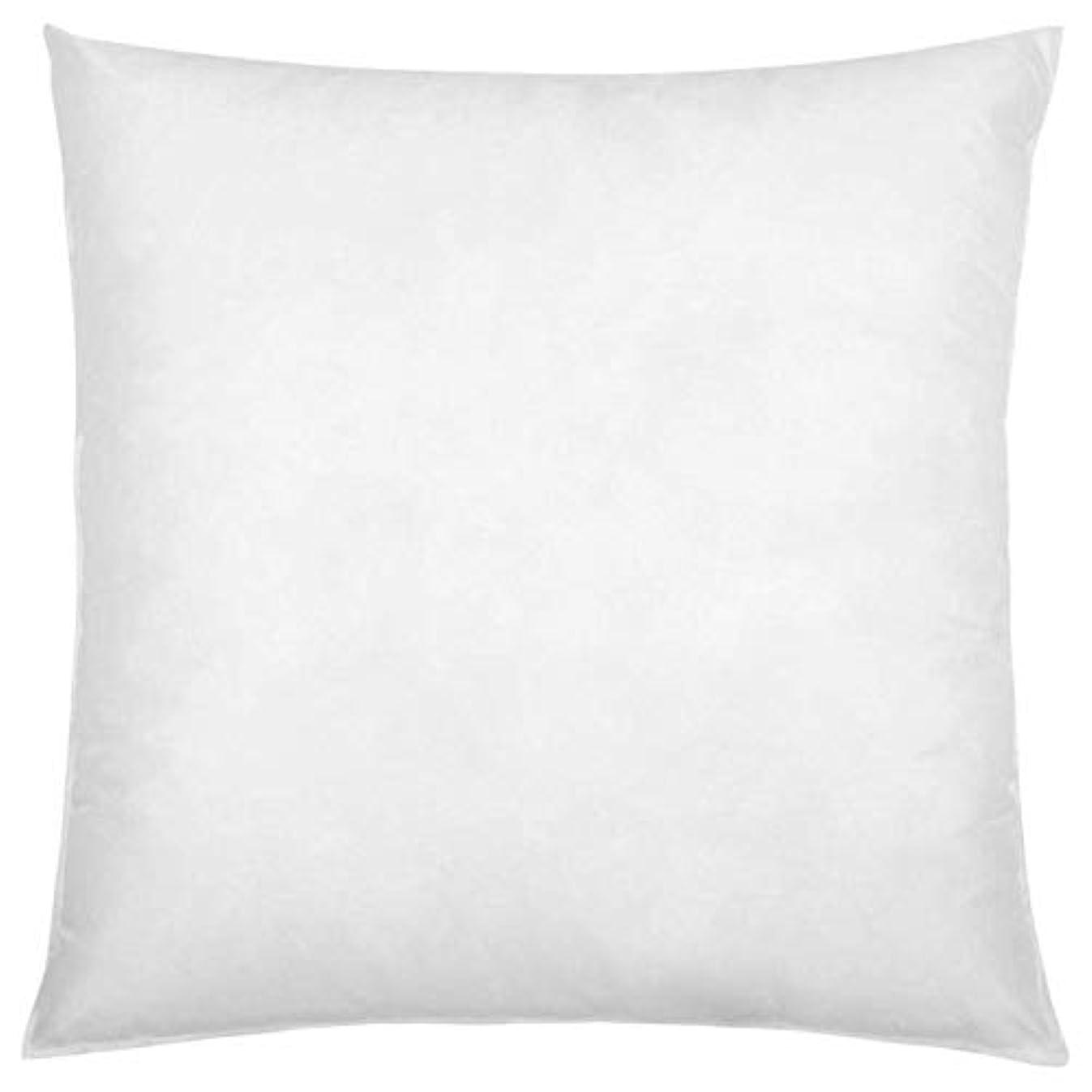 IZO Home Goods Premium Hypoallergenic Throw Pillow Insert Sham Square Form Polyester, 18