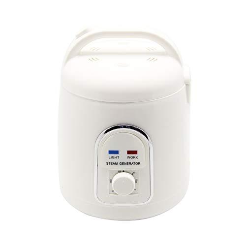 CGOLDENWALL 900 W 1,8 L Sauna máquina de baño de vapor portátil sauna generador de vapor sauna caja infrarrojo sauna oxígeno ionizador