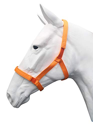 Horse Field Halters Quick Release Breakaway Safety System Safe Turnout (Orange, Horse)