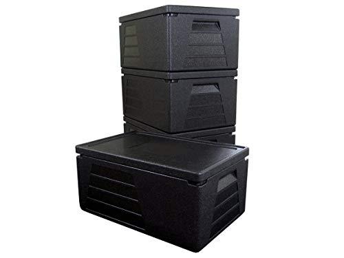 4 x Termo profesional, contenedor isotérmico, recipiente térmico, caja aislante, nevera GN 1/1 con 230 mm de altura útil