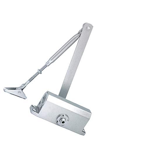 Vosarea feuerfeste Türschließer verdeckte Tür Federscharnier hydraulische Feder Puffer Türschließer automatische Türschließmechanismus (45 kg nicht positionell)